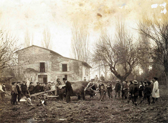 Parma 1861 - 1896: Prima dell'industria